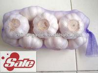 Fresh White Garlic/Price Of Garlic For Germany/UK Market