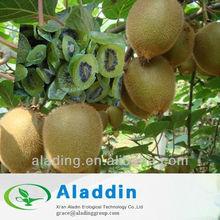 Actinidia (Kiwi Fruit) Extract Powder / Vitamin C / Latin Name: Fructus Actinidiae chinensis.