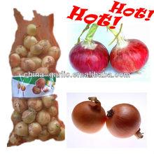 Chinese Onion Price