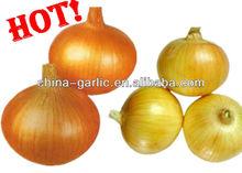 2013 Price of Fresh Yellow Onion 20kg/bag, 50lbs/bag
