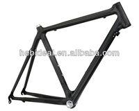 Custome bicycle frame