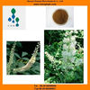Manufacture-Free sample-2.5%HPLC-Black Cohosh Extract-Bulk powder-Supply COA-Best price-Our own product