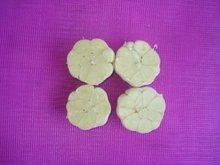 shandong peeled natural garlic