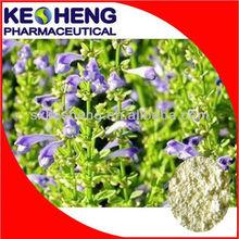 100% Nature Radix Scutellaria Extract,Baicalin 85%