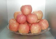 china organic fruit apple china fresh red apple buy apples wholesale