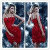 2013 Mini Latest design Chiffon Summer Coctail Dresses LL119