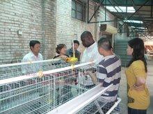 Otomatik kuş Kafesler satılık ucuz