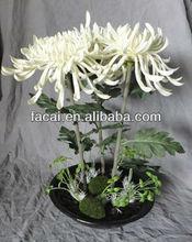 LED flower light (PU Spoon root purpurea )