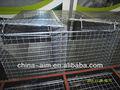 açoinoxidável gaiolas do papagaio