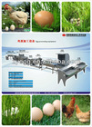 stainless egg cleaner grader machine/equipment sold to egg farms 008613823777570