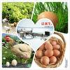 egg cleaning machine/egg farm machine Chinese manufacuturer(008613823777570)