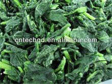 2013 New Crop Frozen Spinach With Best Price