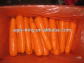 les carottes en gros