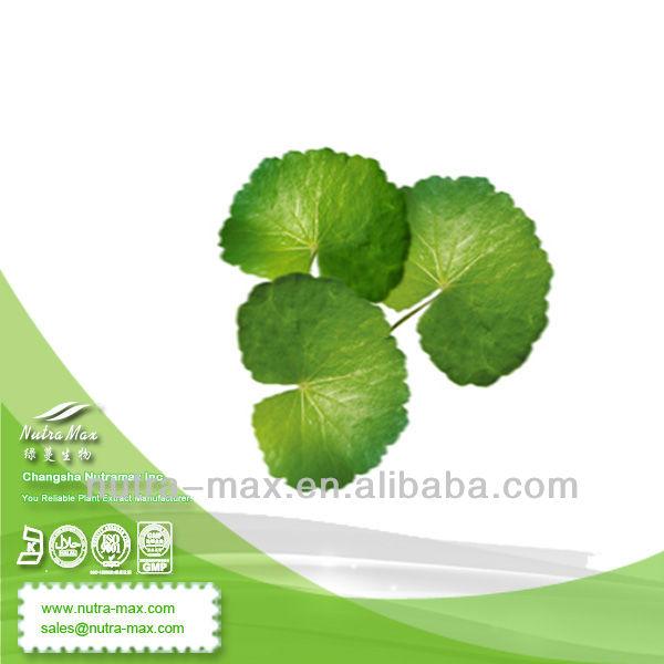 100% Natural Centella Asiatica Extract Powder 10%- 80% Triterpenes