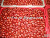 High Quality Healthy Fruit Products Iranian Red Dry Date