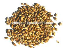 Barley Malt Extract Purity>98% from Tianjiu,China