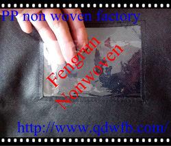 PP eco friendly non-woven Clothes packing Non-woven bag qingdao