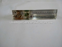 children's rulers,ruler for kids,clear acrylic ruler
