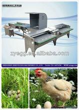 automatic chicken farming equipmnet/egg grading/sorting machine/equipment 008613823737025