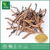 Chinese Wild Cordyceps Extract 40% Polysaccharides
