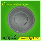 DC 12v/24v Brideglux chip outdoor wall lamp CE&RoHS,led garden light low energy light bulbs led light