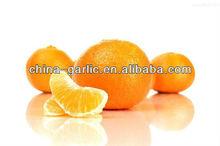 Fresh Orange Supplier/Manufacturer/Exporter