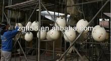 Natural dinosaur egg wholesale