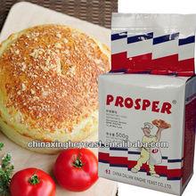 Dried Bakery yeast powder 500g