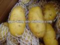 pommes de terre fraîches