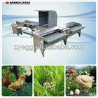chicken egg machines 008613823777570