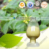 Natural Notoginseng triterpenes CAS:88105-29-7 HPLC10%95%