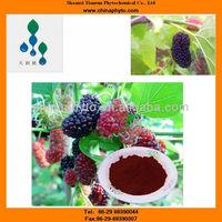 Folium Mori,Ramulus Mori-Free sample-Supply COA-Bulk powder-Manufacturer-5%-25%HPLC-Anthocyanidin-Mulberry Extract