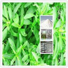High Purity Rebaudioside A 97% Stevia Price