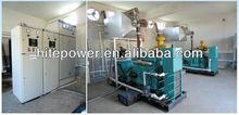CHP natural gas/biogas /biomass generator 10-1000kw from Haitai power