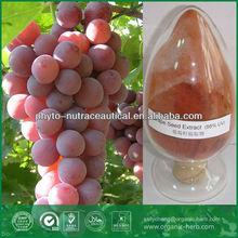 Grape Seed Extract Benefits OPC Antioxidant