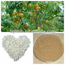 Plant Extract Amygdalin 98%/vitamin B17/semen armeniacae amarae