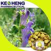radix scutellaria p.e. 85% baicalin