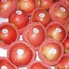 rich of vitamin in pink lady apple