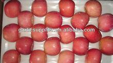 Fuji apple crop 2012