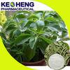 stevia extract 90% stevioside pure powder/pure stevia powder