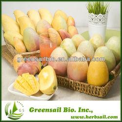 Fresh Mango seed extract/ Irvingia gabonensis extract powder,CAS No.: 192230-28-7