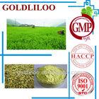 Free Sample GMP & HACCP BP2009/USP32 100% Natural Rutin Powder NF11