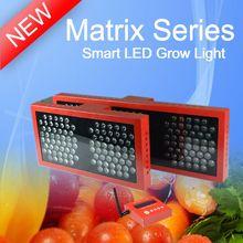2013 NEW Matrix Tomato growing led grow light,looking for distributor