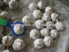 Garlic Vegetables Price List