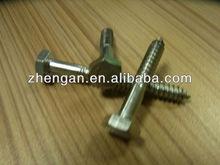 lag screw bolt