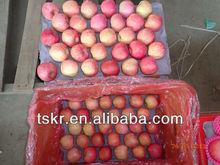 bagged apple fruit fuji fruit market prices apple
