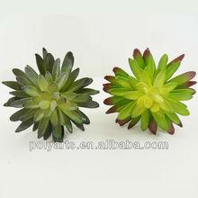 Decorative plants,artificial decorative succulent plants