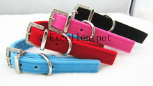 2013 new Pet Accessories Wholesale/Pet collarWith Different Kinds Of Colour
