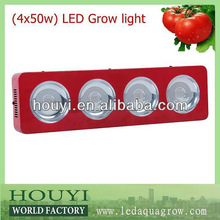 lighting high power led full tomato manufacturing grow box indoor