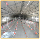 China chicken poultry farm house design